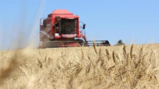 Çiftçilere ödenecek tarımsal destek belli oldu